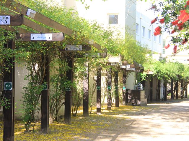 terrazas-de-cariló_1_139_2 Terrazas de Cariló   Cabañas.com