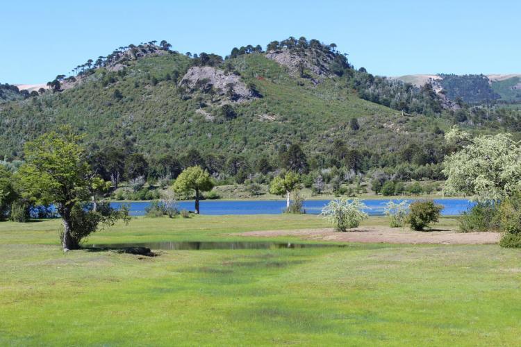 165656691 Cabañas Brillo de Luna (Villa Pehuenia) - Cabañas.com