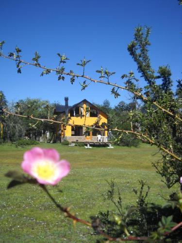36089281 Cabañas Brillo de Luna (Villa Pehuenia) - Cabañas.com