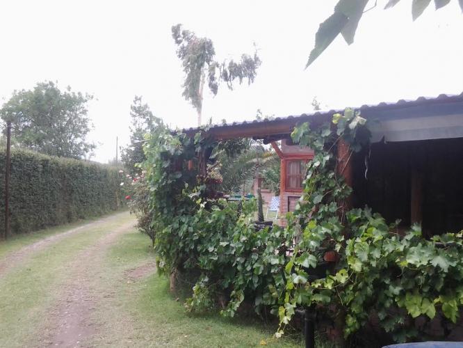 4 Complejo Los Ciruelos, San Rafael Mendoza