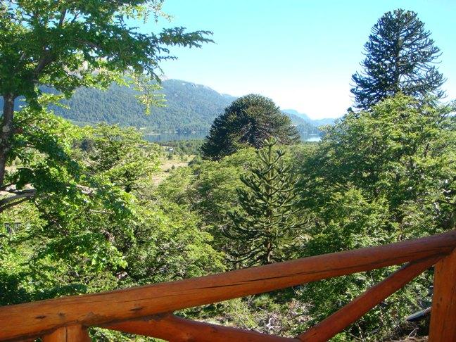 22 Cabañas Altos de Moquehue (Villa Pehuenia) - Cabañas.com