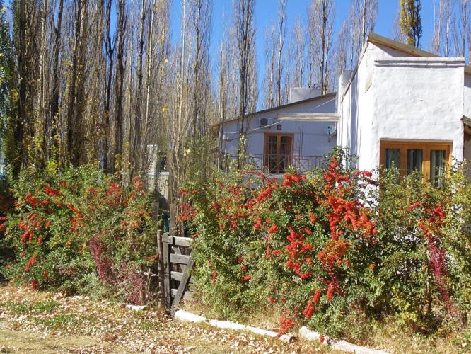 6007121222595660807556832102160357068898304o Los Abedules Bungalow (Malargue, Mendoza) - Cabañas.com