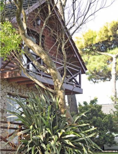 6 Cabañas Los Ciruelos (Villa Gesell) - Cabañas.com
