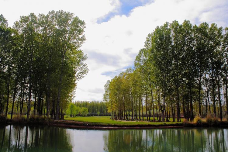 23152099 Risco Plateado Golf Rooms & Suites | Cabañas.com
