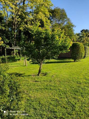 IMG_20201112_WA0008 Cabañas Valle Verde (Sierra de los Padres) - Cabañas.com