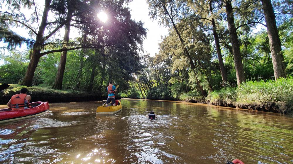 Paseo12 Río Manso Tigre solo para adultos   Cabañas.com