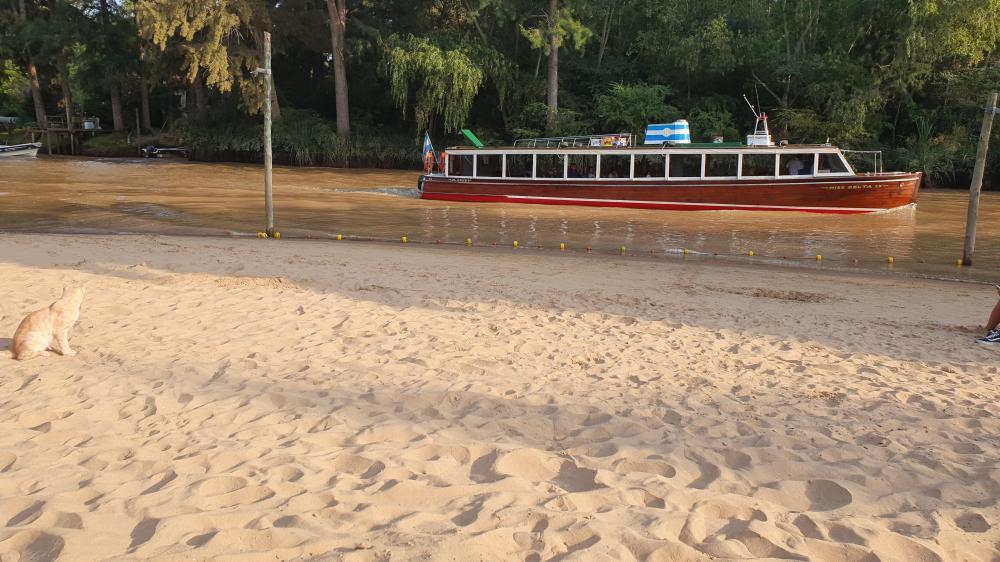 Transporte7 Río Manso Tigre solo para adultos   Cabañas.com