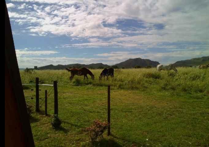 caballos Cabañas La Ñata Sierra de la Ventana - Cabañas.com